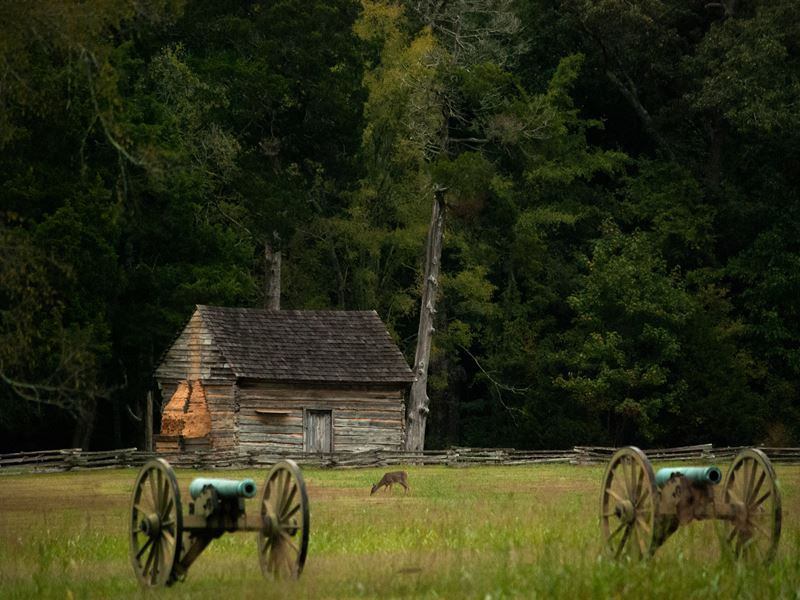 shiloh national military park tennessee