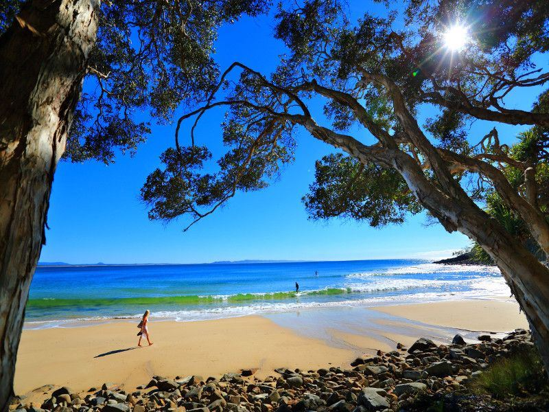teatree bay noosa national park sunshine coast   tourism images