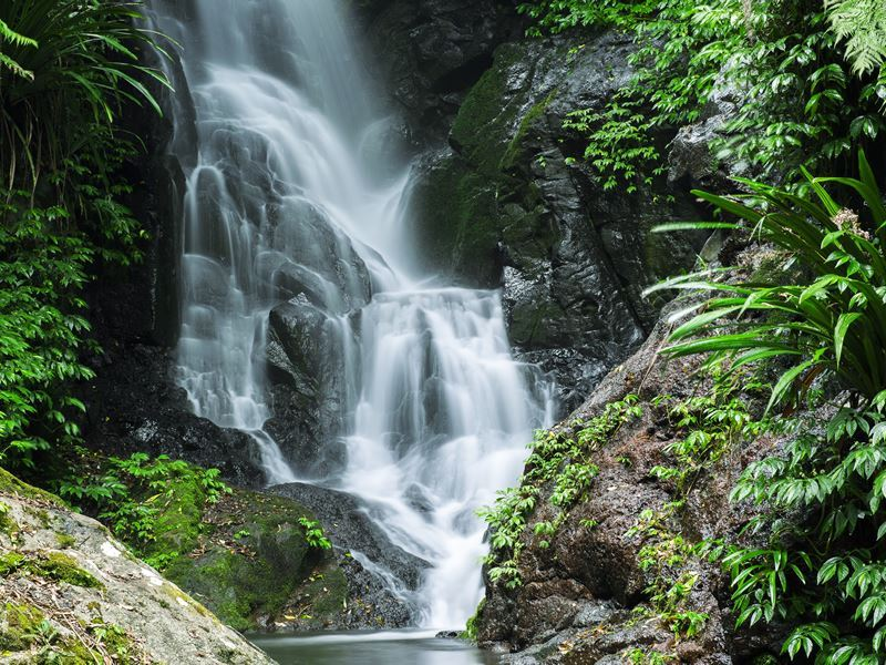 waterfall lamington national park queensland