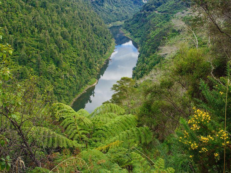 whanganui river north island